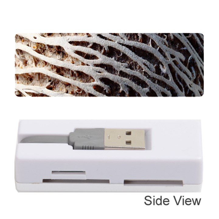 Seed Worn Lines Close Macro Memory Card Reader (Stick)