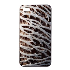 Seed Worn Lines Close Macro Apple Iphone 4/4s Seamless Case (black) by Nexatart