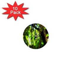 Spider Spiders Web Spider Web 1  Mini Buttons (10 Pack)  by Nexatart