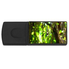 Spider Spiders Web Spider Web Usb Flash Drive Rectangular (4 Gb)