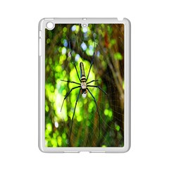 Spider Spiders Web Spider Web Ipad Mini 2 Enamel Coated Cases by Nexatart