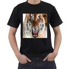Tiger  Men s T Shirt (black) (two Sided)