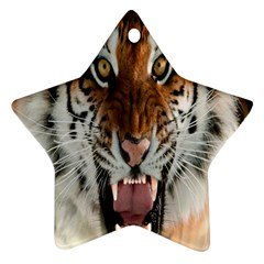 Tiger  Star Ornament (two Sides)