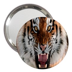 Tiger  3  Handbag Mirrors by Nexatart