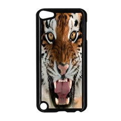 Tiger  Apple Ipod Touch 5 Case (black) by Nexatart
