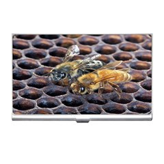 Worker Bees On Honeycomb Business Card Holders by Nexatart