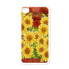 Sunflowers Flowers Abstract Apple Iphone 4 Case (white)