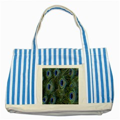 Peacock Feathers Blue Bird Nature Striped Blue Tote Bag