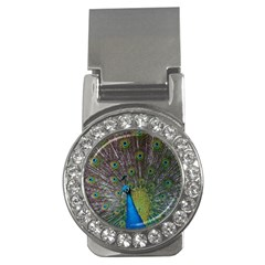 Peacock Feather Beat Rad Blue Money Clips (cz)