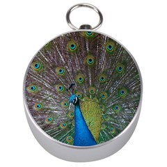 Peacock Feather Beat Rad Blue Silver Compasses by Amaryn4rt