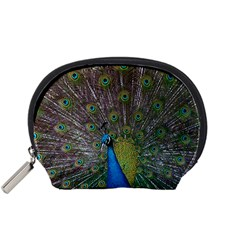 Peacock Feather Beat Rad Blue Accessory Pouches (small)  by Amaryn4rt