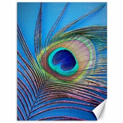 Peacock Feather Blue Green Bright Canvas 36  X 48
