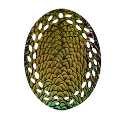 Peacock Bird Feather Gold Blue Brown Oval Filigree Ornament (two Sides) by Alisyart