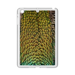 Peacock Bird Feather Gold Blue Brown Ipad Mini 2 Enamel Coated Cases
