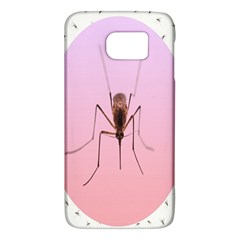 Mosquito Pink Insect Blood Galaxy S6 by Alisyart