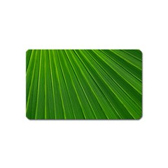 Green Lines Macro Pattern Magnet (name Card) by Amaryn4rt