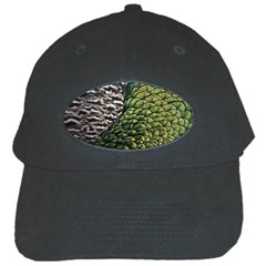 Bird Feathers Green Brown Black Cap