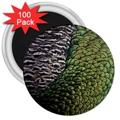 Bird Feathers Green Brown 3  Magnets (100 Pack) by Alisyart