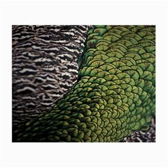 Bird Feathers Green Brown Small Glasses Cloth (2 Side)