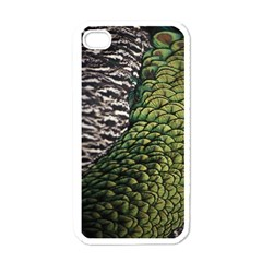 Bird Feathers Green Brown Apple Iphone 4 Case (white)