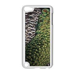 Bird Feathers Green Brown Apple Ipod Touch 5 Case (white)