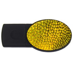 Jack Shell Jack Fruit Close Usb Flash Drive Oval (2 Gb)