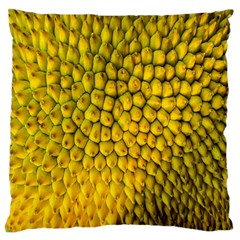 Jack Shell Jack Fruit Close Large Cushion Case (two Sides)