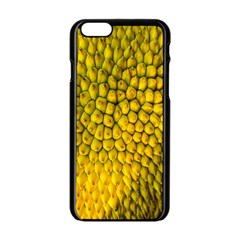 Jack Shell Jack Fruit Close Apple Iphone 6/6s Black Enamel Case by Amaryn4rt