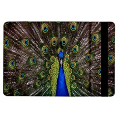 Bird Peacock Display Full Elegant Plumage Ipad Air Flip by Amaryn4rt