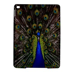 Bird Peacock Display Full Elegant Plumage Ipad Air 2 Hardshell Cases