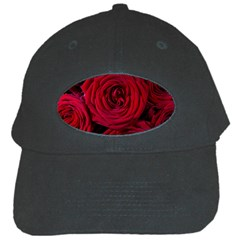 Roses Flowers Red Forest Bloom Black Cap