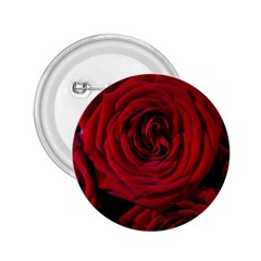 Roses Flowers Red Forest Bloom 2.25  Buttons