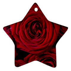 Roses Flowers Red Forest Bloom Ornament (Star)