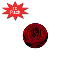 Roses Flowers Red Forest Bloom 1  Mini Magnet (10 pack)