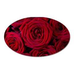 Roses Flowers Red Forest Bloom Oval Magnet