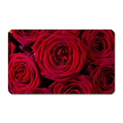 Roses Flowers Red Forest Bloom Magnet (Rectangular)