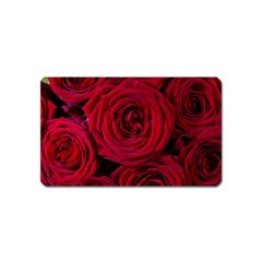 Roses Flowers Red Forest Bloom Magnet (Name Card)