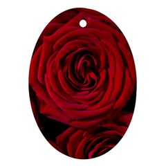 Roses Flowers Red Forest Bloom Oval Ornament (Two Sides)
