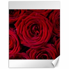 Roses Flowers Red Forest Bloom Canvas 12  x 16