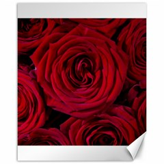 Roses Flowers Red Forest Bloom Canvas 16  x 20