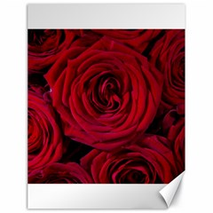 Roses Flowers Red Forest Bloom Canvas 18  x 24