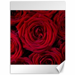 Roses Flowers Red Forest Bloom Canvas 36  x 48