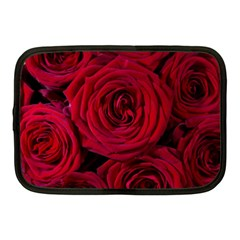 Roses Flowers Red Forest Bloom Netbook Case (Medium)
