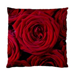 Roses Flowers Red Forest Bloom Standard Cushion Case (Two Sides)