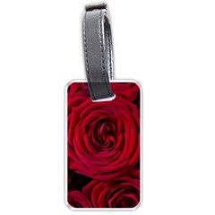Roses Flowers Red Forest Bloom Luggage Tags (Two Sides)