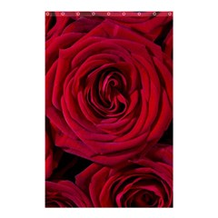 Roses Flowers Red Forest Bloom Shower Curtain 48  x 72  (Small)
