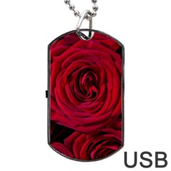 Roses Flowers Red Forest Bloom Dog Tag USB Flash (Two Sides)