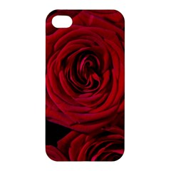 Roses Flowers Red Forest Bloom Apple iPhone 4/4S Premium Hardshell Case