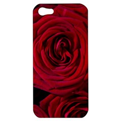 Roses Flowers Red Forest Bloom Apple iPhone 5 Hardshell Case