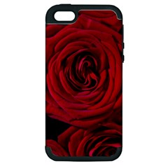 Roses Flowers Red Forest Bloom Apple iPhone 5 Hardshell Case (PC+Silicone)
